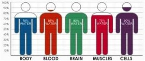 body water H3O2 EZ Structured Water