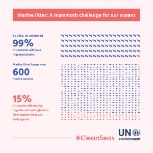 2050 plastic ingested by seabirds
